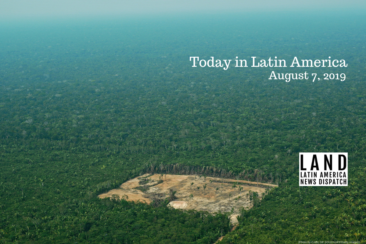 New Data Shows Deforestation Intensified In The Amazon